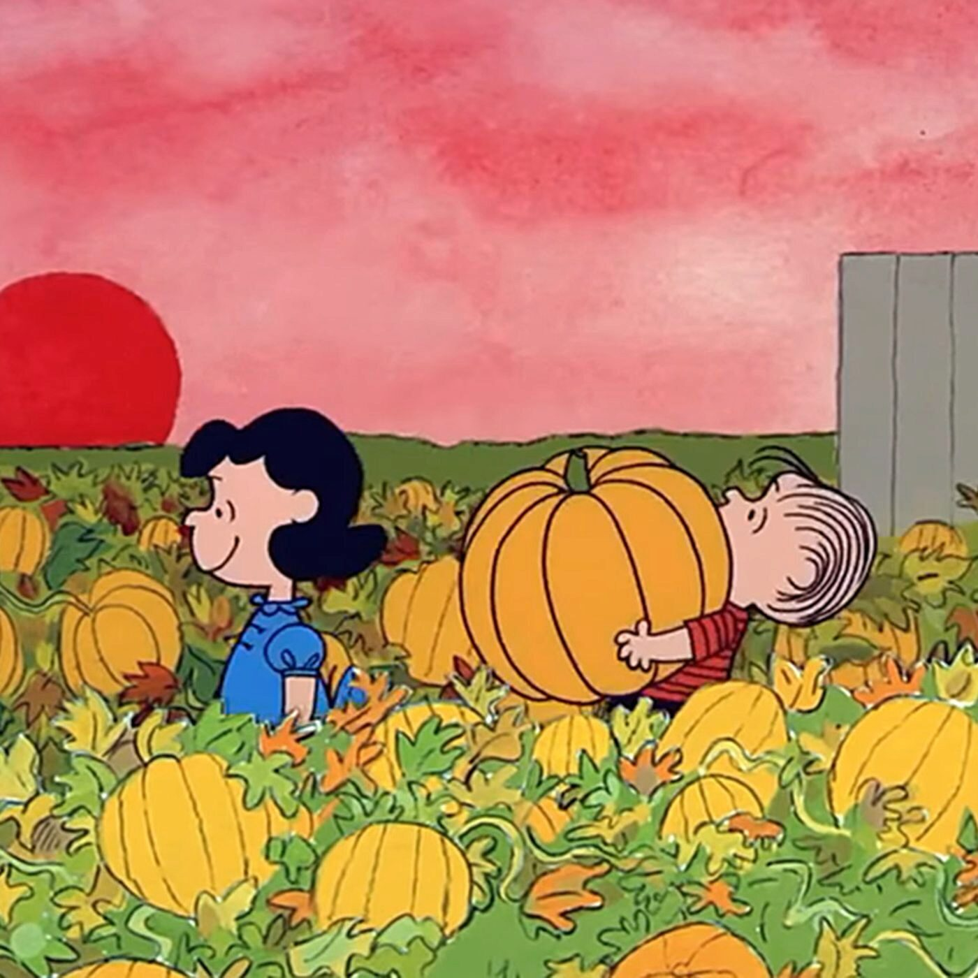 Linus carrying a pumpkin from Charlie Brown