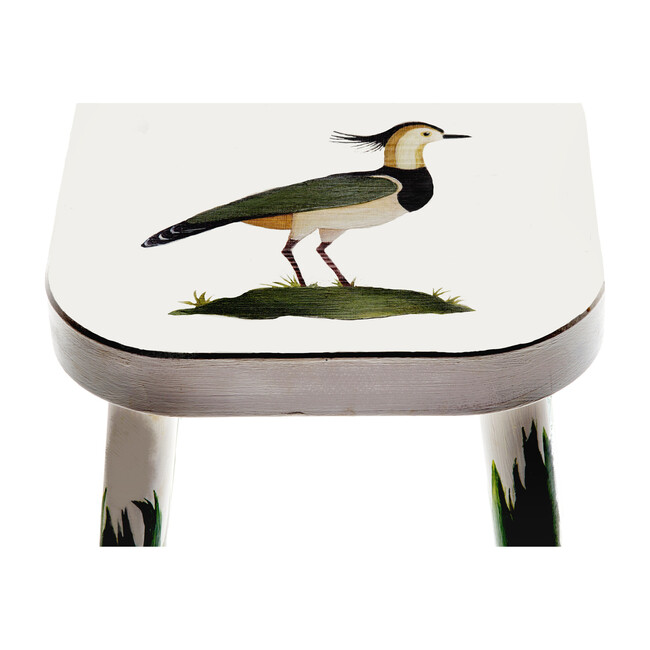 Handpainted Wooden Stool, Lapwing Lilly