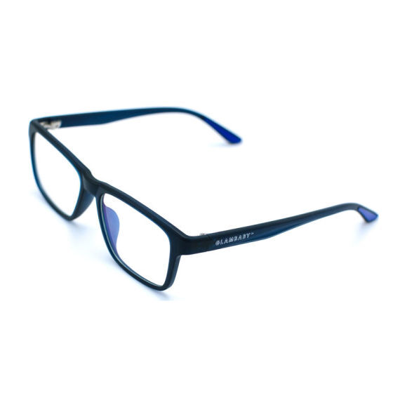 Hayes Blue Light Protect glasses, Black