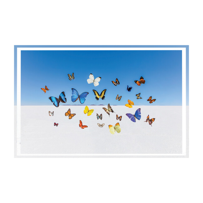 "The Butterflies Tray, 22.5"" x 14.5"""