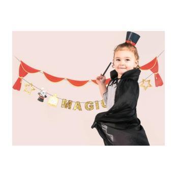 Magic Show Mini Magician Hats
