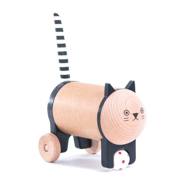 Safebox Cat