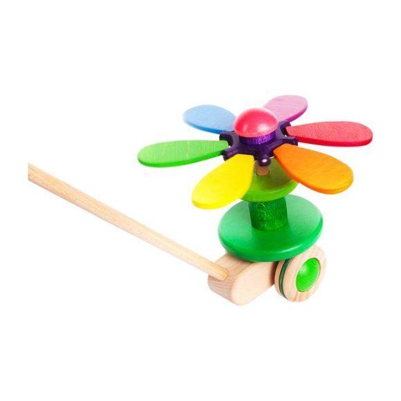 Rainbow Flower Push Toy
