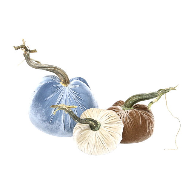 Exclusive Pumpkin Trio, Blue Neutral