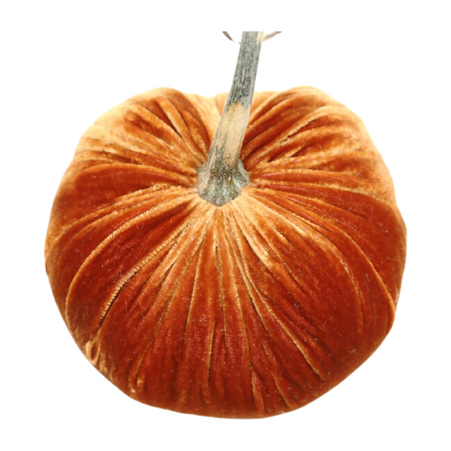 Velvet Pumpkin, Persimmon