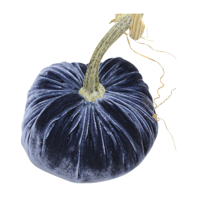 Velvet Pumpkin, Sapphire