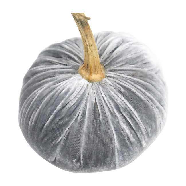 Velvet Pumpkin, Grey