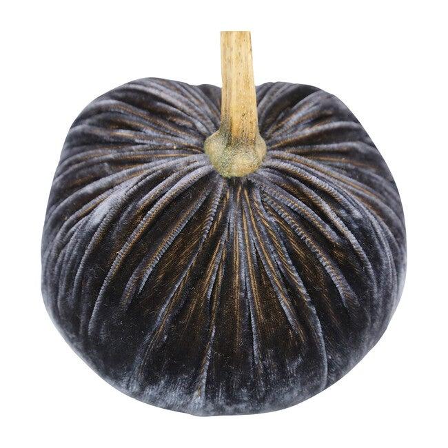 Velvet Pumpkin, Graphite