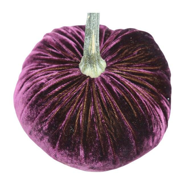 Velvet Pumpkin, Eggplant