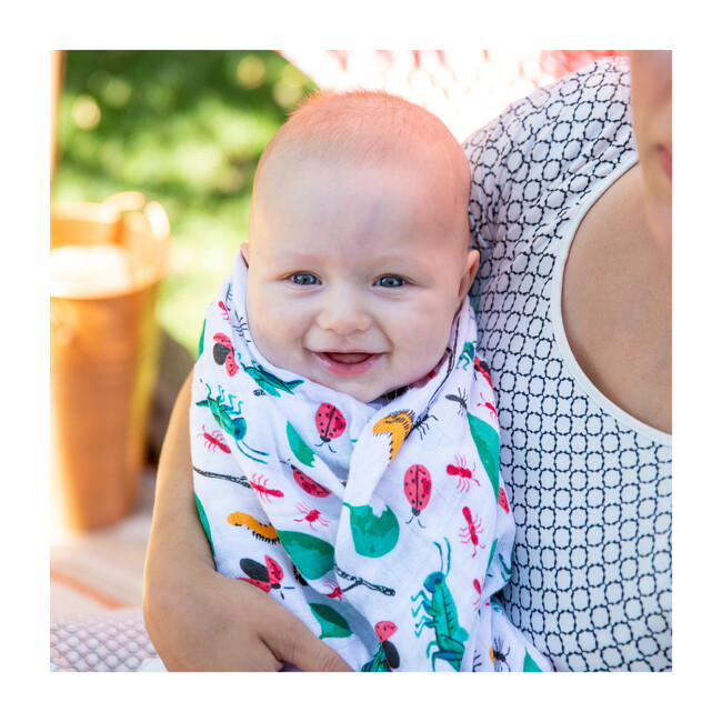 Swaddle Blankets, Bugs & Picnic