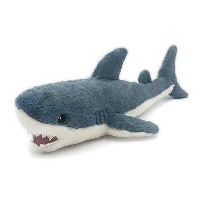 Seaborn the Shark