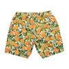 Men's Hudson Boardshort Le'Orangerie - Swim Trunks - 2