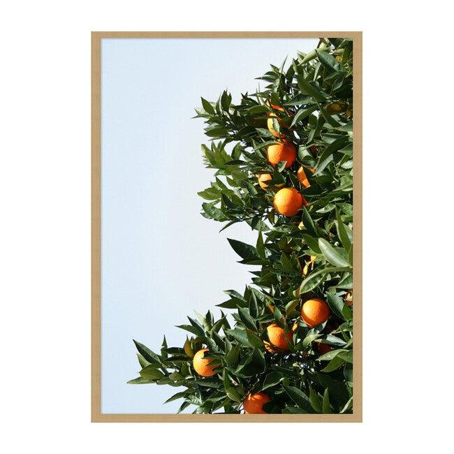 East Ojai Orange Tree by Nathan Turner