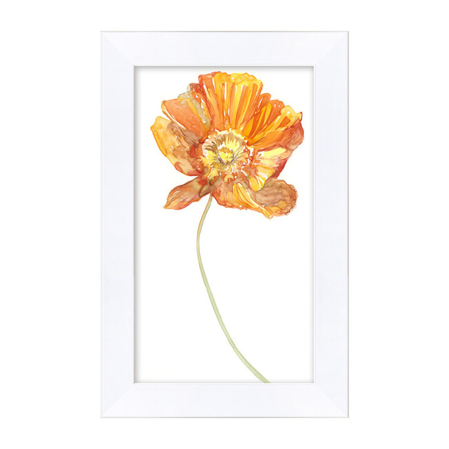 Watercolor Poppy by Nathan Turner