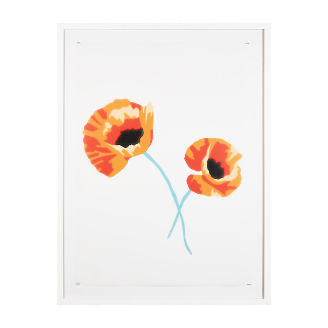 Poppy Flowers by Nathan Turner