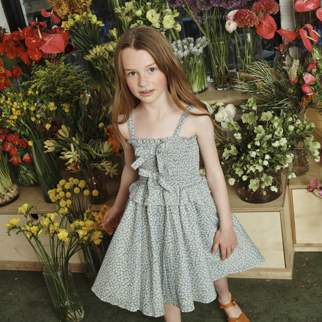 Naomi Dress, Blue Daisies