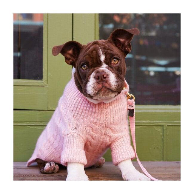 The Rufus Sweater, Sugar