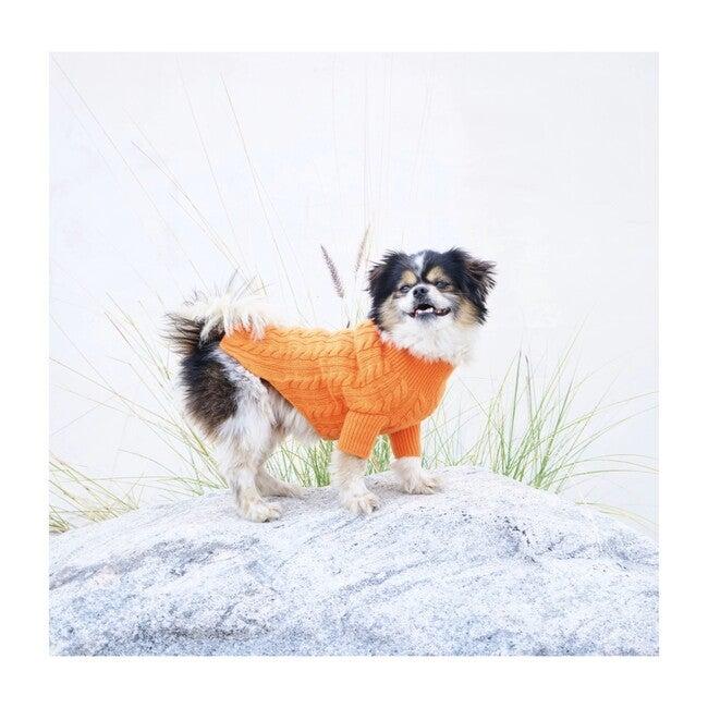 The Rufus Sweater, Tangerine