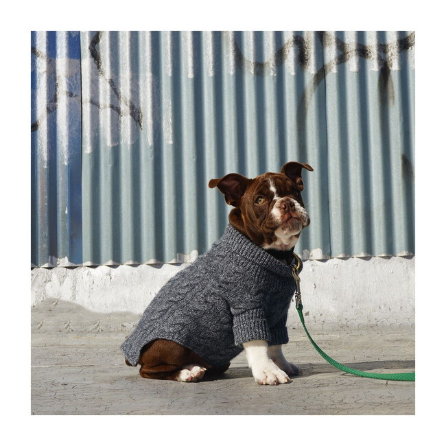 The Rufus Sweater, Speckle