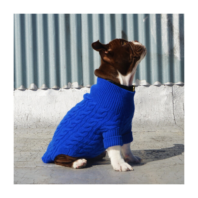 The Rufus Sweater, Blueberry