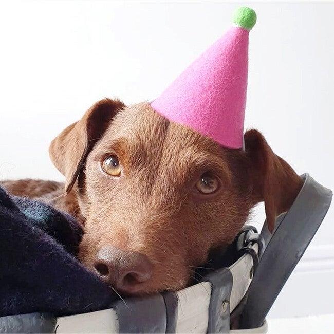 Pawty Hat, Pink