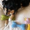 Woolbone, Rose - Pet Toys - 2