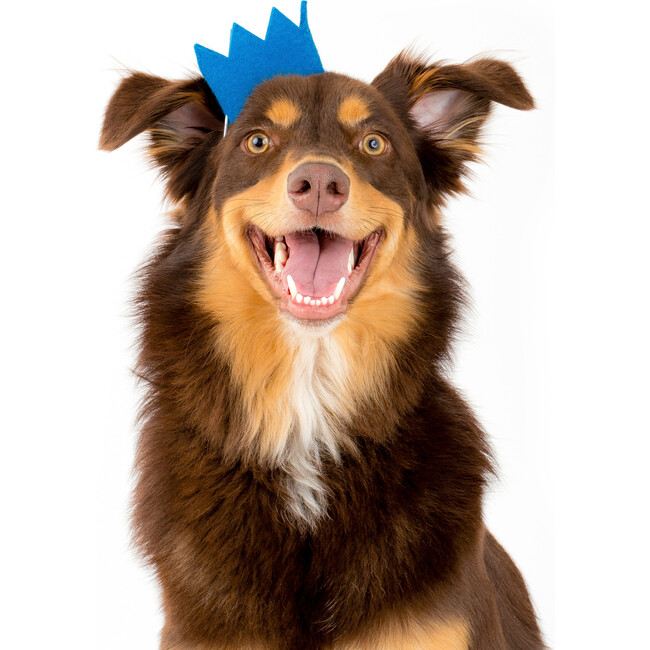 Party Beast Crown, Blue
