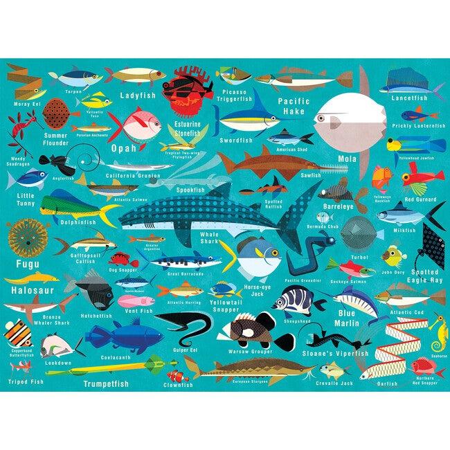 Ocean Life: 1000 Piece Family Puzzles