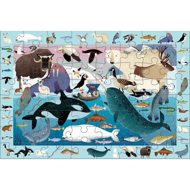 Arctic Life: Search & Find Puzzles 64 Pieces