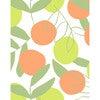 Tea Collection Citrus Traditional Wallpaper, Citrine - Wallpaper - 3