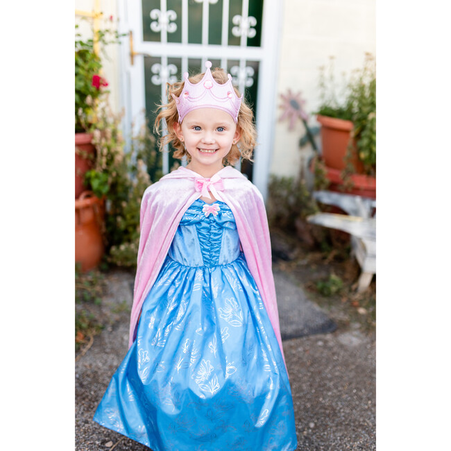 Cinderella Butterfly