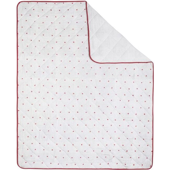 Charlie Baby Quilt