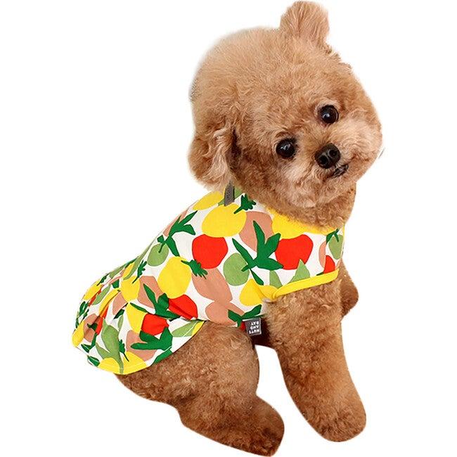 Lemon Dog Dress, Multi