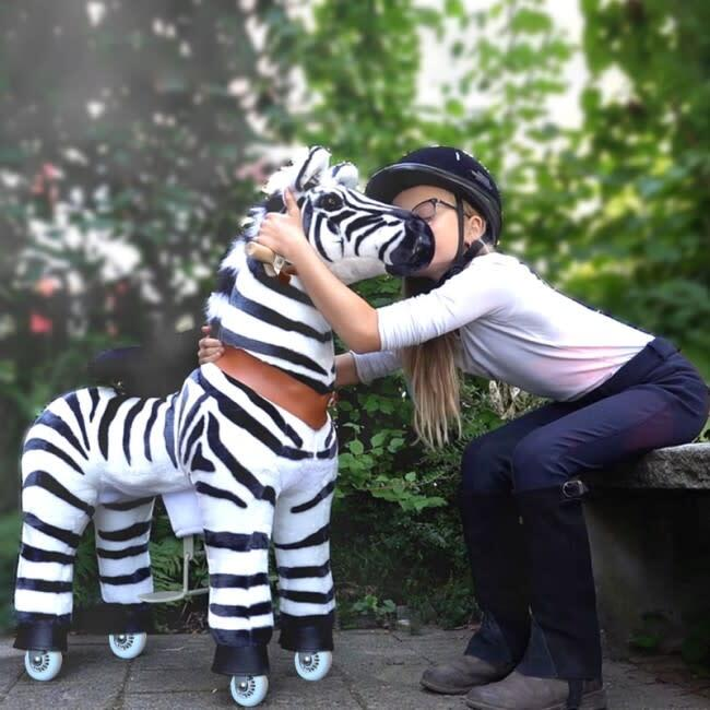 Zebra, Medium
