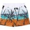 Men's Beach Band Swim Trunks, Long - Swim Trunks - 1 - thumbnail