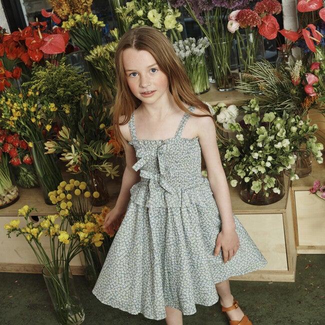 Naomi Dress, Blue Daisies