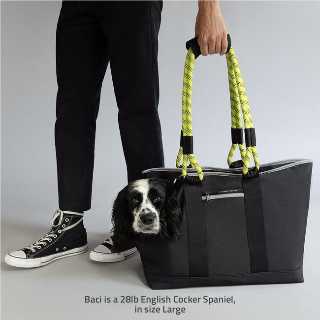 Commuter Dog Tote, Black and Yellow