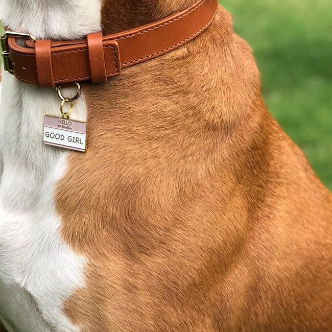 Good Girl Pet ID Tag