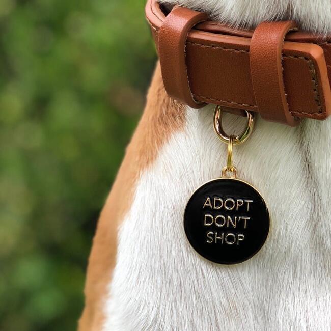 Adopt Don't Shop Pet ID Tag, Black