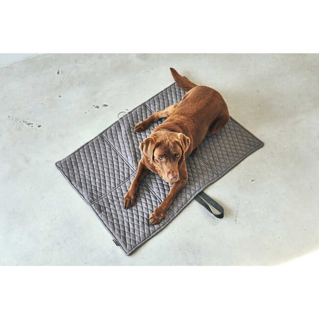 Cosmo Travel Dog Bed, Pebble and Graphite