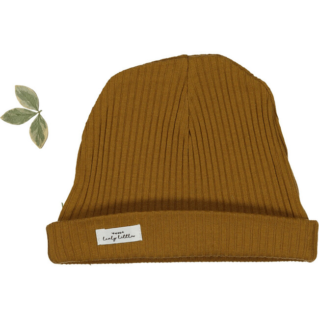 The Ribbed Hat, Cider