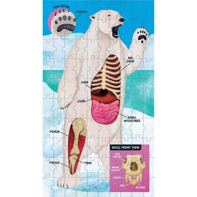 Animal Anatomy Science Puzzle Set