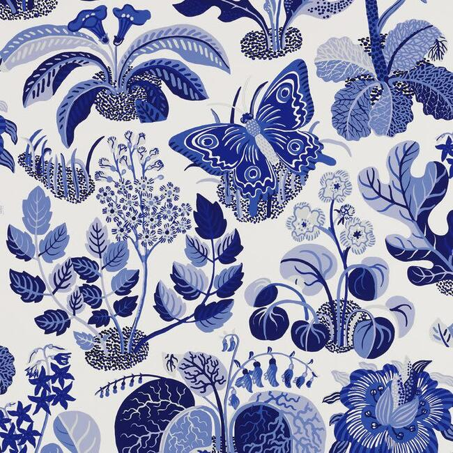 Exotic Butterfly Wallpaper, Marine