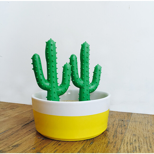 Silly Succulent Toy Cactus
