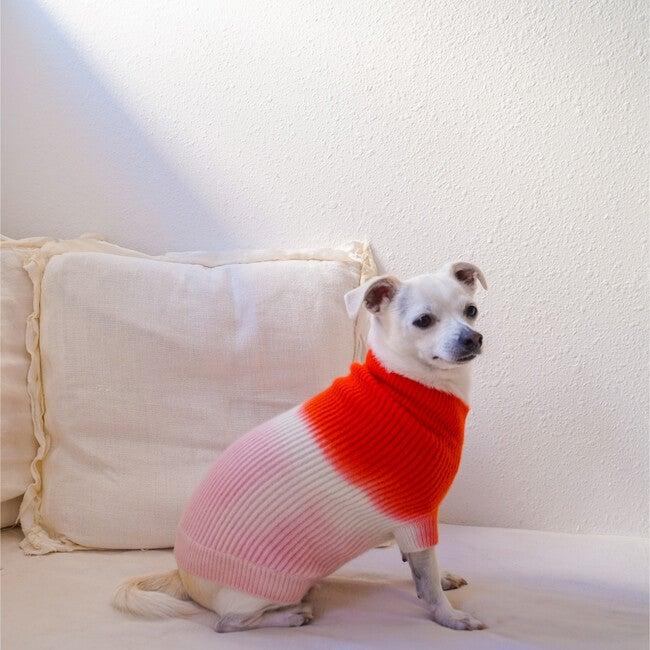 The Major Sweater, Sugar