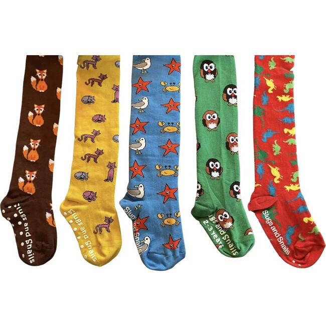 Animals Footed Tights Set of Five