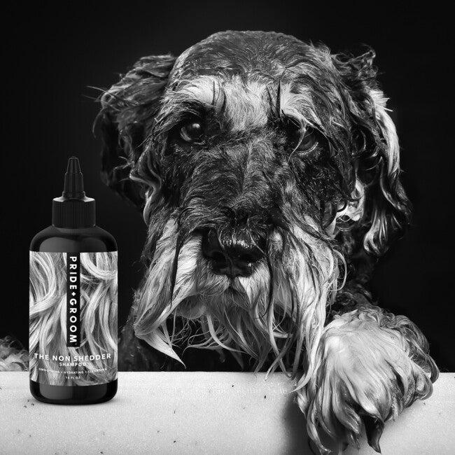 The Non Shedder Dog shampoo