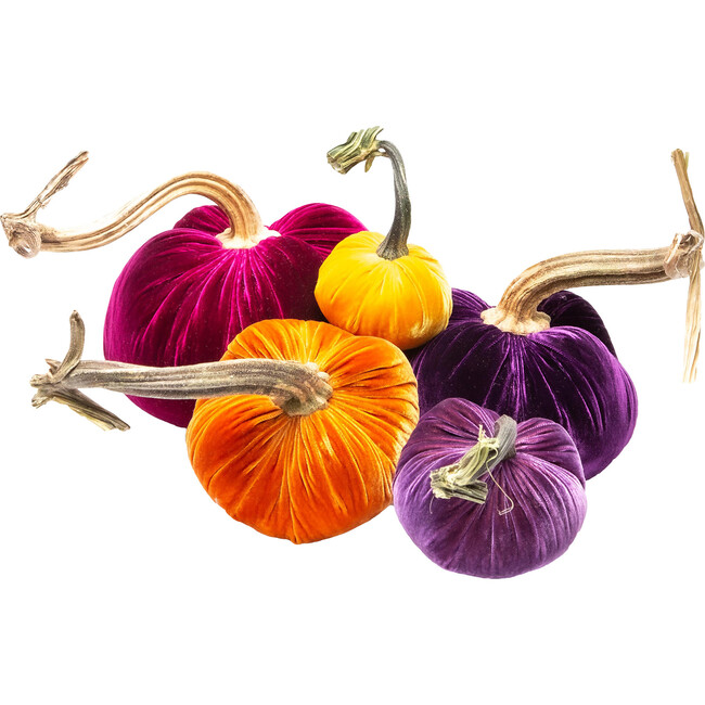 Pumpkin Set, Purple