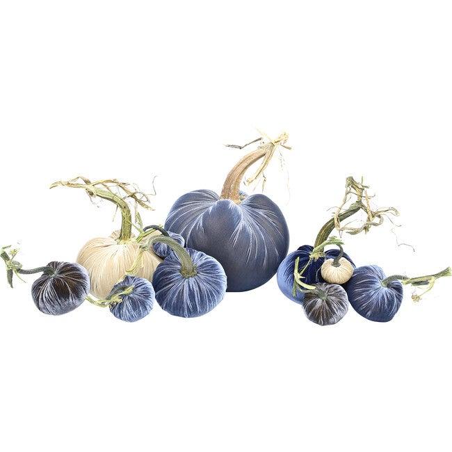 Exclusive Full Harvest Set, Blue