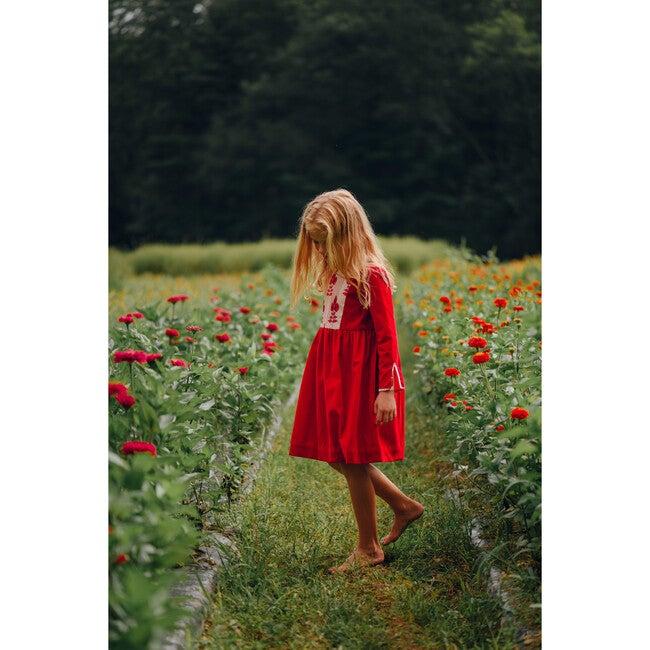 Kendal Dress, Velvet